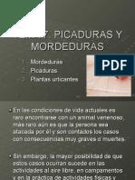 Primeros Auxilios Tema 7. Picaduras y Mordeduras
