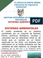 SISTEMAS AMBIENTALES 1
