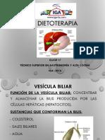 Clase 17- Enfermedades de Las Vías Biliares