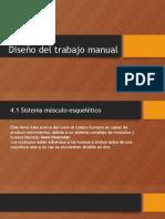 Diseño Del Trabajo Manual