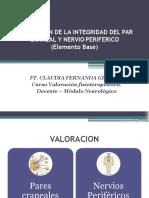 5. Categoria de la integridad del nervio periferico.pptx
