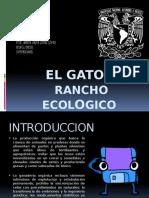 El Gato Rancho Ecologico1234567