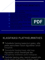 Filum Platyhelminthes 1