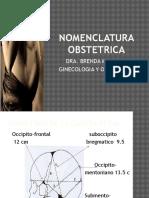 3-Nomenclatura-obstetrica
