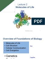 Biology Slides 3
