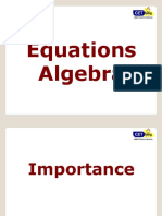 Equations and Polynomials Workshop Handout