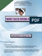 FUNCIONES Y ROLES.pdf