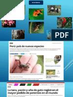 Diapositivas biiodiversidad