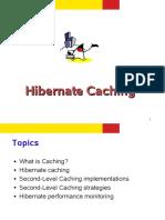 hibernatecaching.pdf