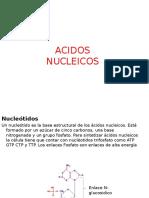 Acidos Nucleicos y Proteinas