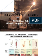 5  copy of the human eye  hungry harvester of light  ppt