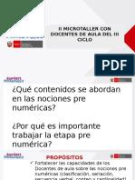 II Microtaller a-nociones Pre-numericas