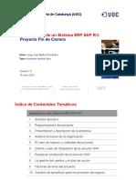 Imprementacion d eun ERP SAP.pdf
