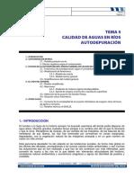 Mca Tema 5 Modelos de Calidad de Aguas en Rios