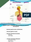 Fitoterapie Curs 34