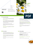 Produktblatt_Kamille.pdf