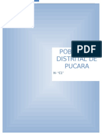 Proyecto de La Poblacion de Pucara