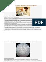 TÉCNICAS DE CONTROL MICROBIOLÓGICO EN ENOLOGÍA.docx