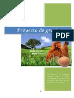 Proyecto de Gallinas