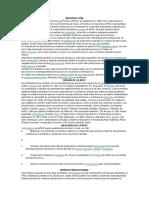 apec (2).docx