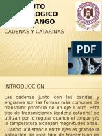 Cadenas y Catarinas Expo