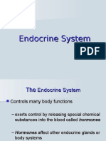Anp2001 Week 6 Endocrine to Male Repr
