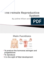 Female Reproductive