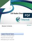 03 TK410 LTE Basics LTE Radio Channels-walid-2016