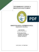 Informe de Embriologia