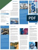 Flyer Dfg Im Profil Spanisch