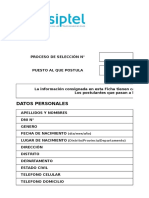 Formato n1 Ficha Resumen Curricular