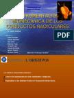 INSTRUMENTACIÓN BIOMECÁNICA DE LOS CONDUCTOS RADICULARES