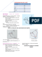 Determinacion Del Vert (Super Resumen)