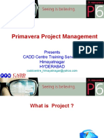 20173674 Primavera Project Management