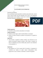 Papelote 2 Granada-papelote