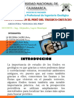 Fosiles en El Peru Ppt