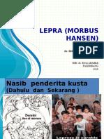 Power Point Morbus Hansen