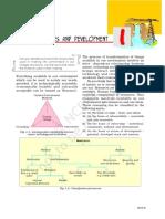 jess101.pdf