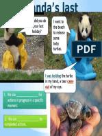 Infographic Pandas