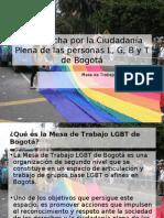 XIV Marcha por la Ciudadanía Plena de las personas LGBT