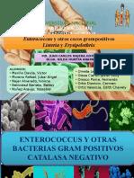 Emterococcus y otros cocos gram(+), Listeria y Erysipelothrix