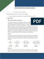 Practica N 4 Quimica II
