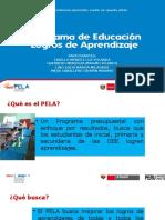 PELA.pptx