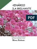Maria Brilhante - Estrela Brilhante - Tablet