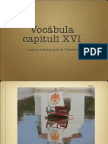 Vocabula Cap XVI LLPSI