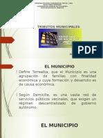 Tributos Municipales