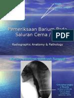 Anatomi Radiologi Barium Studies for GIT (1)