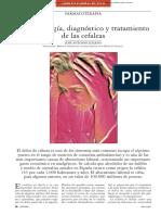 Fisiopatologia de La Cefaleas