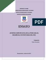 Ensayo_ La Pyme
