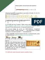 1_notiunea_de_fractie.doc